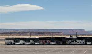 Different bus tours are parked in the Grand Canyon